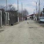 Strada Crinului - Inainte