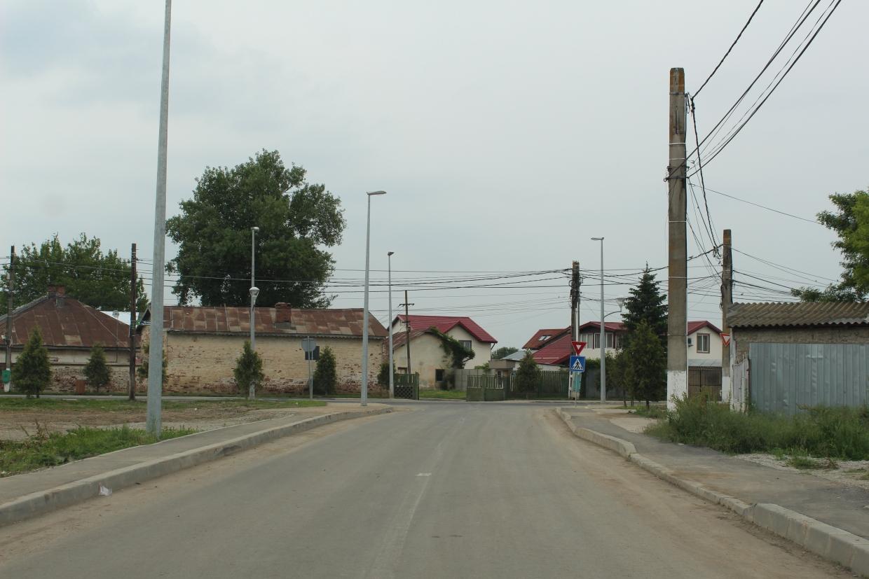 Strada_Ficusului_1_1