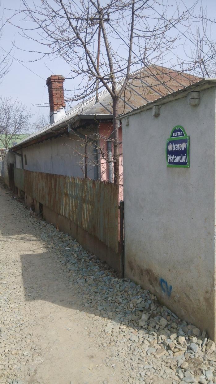 Strada_Platanului_2