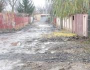 Strada_Nucilor_1