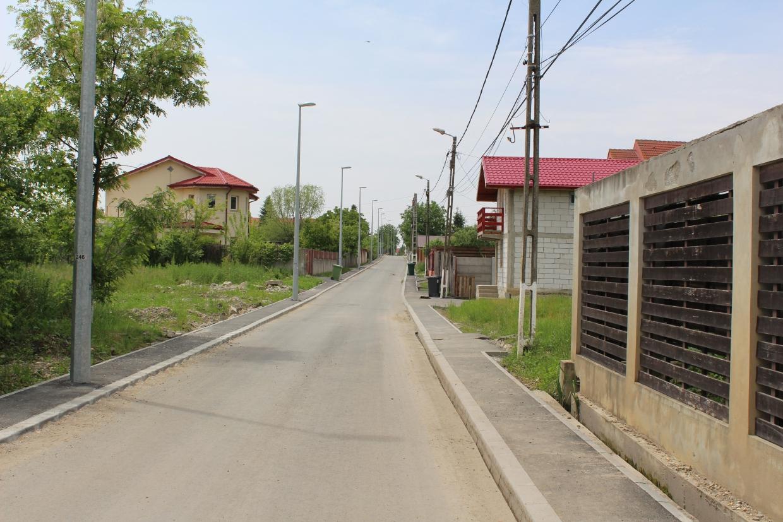 Strada_Aleea_Cu_brazi_1_1