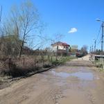 Strada_Aleea_Cu_brazi_1