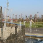 Parcul dintre flori