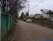 Strada_Nucilor_2